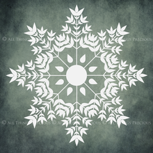 Load image into Gallery viewer, SNOWFLAKE PHOTOSHOP BRUSHES With Clipart - Set 1