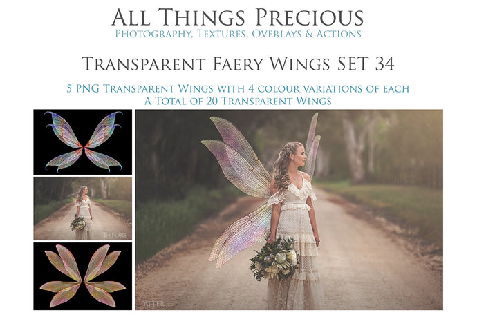 20 Png FAIRY WING Overlays Set 34