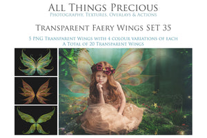 20 Png TRANSPARENT FAIRY WING Overlays Set 35
