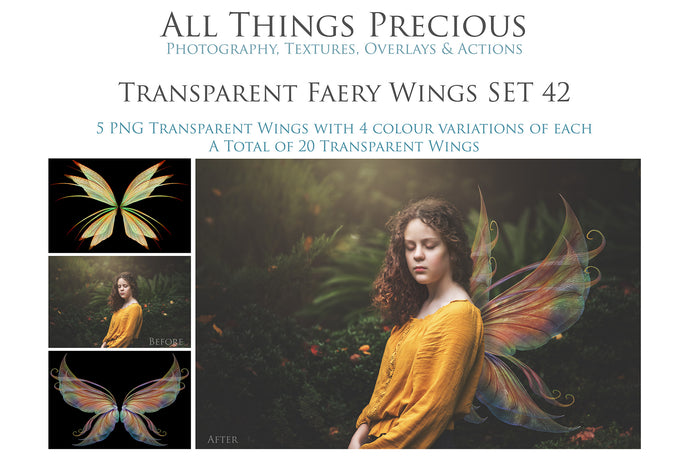 Copy of 20 Png FAIRY WING Overlays Set 42