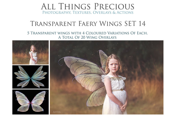 20 Png FAIRY WING Overlays Set 14