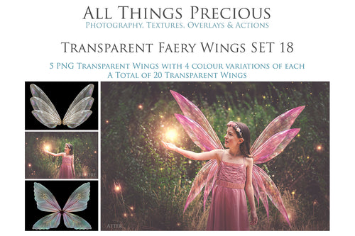 20 Png TRANSPARENT FAIRY WING Overlays Set 18