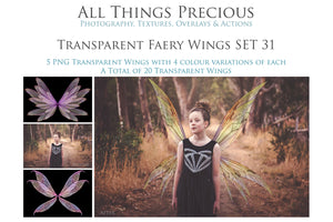 20 Png TRANSPARENT FAIRY WING Overlays Set 31