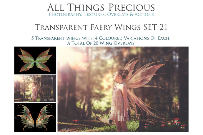 20 Png FAIRY WING Overlays Set 21