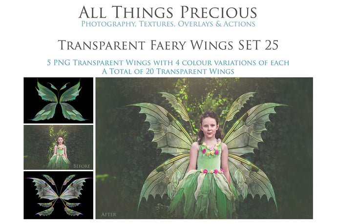 20 Png FAIRY WING Overlays Set 25