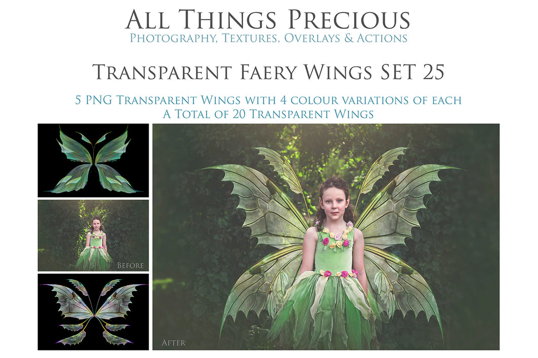 20 Png TRANSPARENT FAIRY WING Overlays Set 25