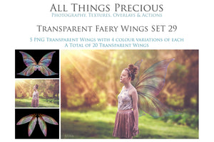 20 Png TRANSPARENT FAIRY WING Overlays Set 29