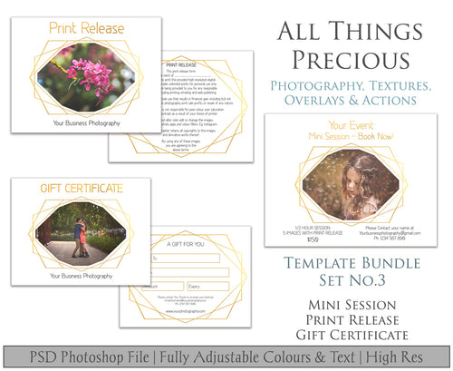 Template Set No.3  GIFT Certificate / MINI Session / PRINT Release BUNDLE