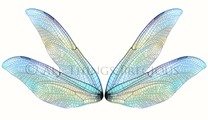 20 Png TRANSPARENT FAIRY WING Overlays Set 7