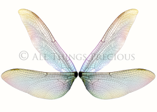 Load image into Gallery viewer, 20 Png TRANSPARENT FAIRY WING Overlays Set 7