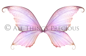 20 Png TRANSPARENT FAIRY WING Overlays Set 9