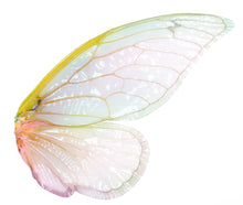 Load image into Gallery viewer, 20 Png TRANSPARENT FAIRY WING Overlays Set 2