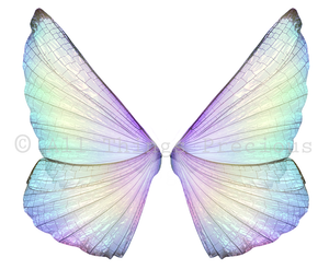 20 Png TRANSPARENT FAIRY WING Overlays Set 3