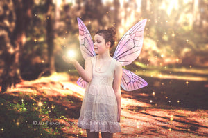 20 Png TRANSPARENT FAIRY WING Overlays Set 27
