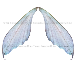 20 Png RESTING TRANSPARENT FAIRY WING Overlays Set 1