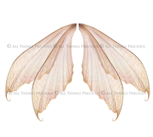 Load image into Gallery viewer, 20 Png RESTING TRANSPARENT FAIRY WING Overlays Set 1