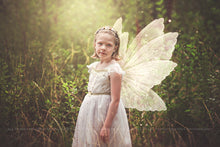 Load image into Gallery viewer, 8 Png WHITE FAIRY WING Overlays Set 5
