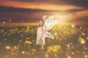 8 Png WHITE FAIRY WING Overlays Set 7