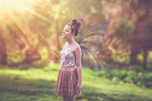 20 Png TRANSPARENT FAIRY WING Overlays Set 30