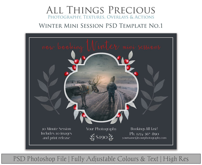 WINTER MINI SESSION - PSD Template No.1