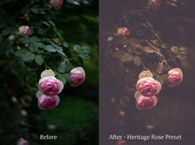 Load image into Gallery viewer, WOODLAND Set 3 Lightroom Presets - For Mobile