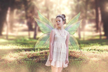 Load image into Gallery viewer, 20 Png TRANSPARENT FAIRY WING Overlays Set 22