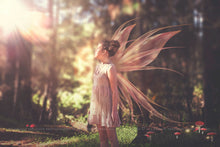 Load image into Gallery viewer, 20 Png TRANSPARENT FAIRY WING Overlays Set 21