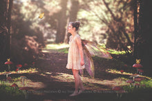 Load image into Gallery viewer, 20 Png FAIRY WING Overlays Set 30