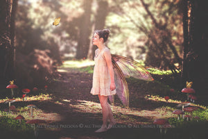 20 Png FAIRY WING Overlays Set 30