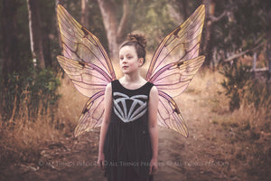 20 Png TRANSPARENT FAIRY WING Overlays Set 16