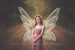 20 Png TRANSPARENT FAIRY WING Overlays Set 19