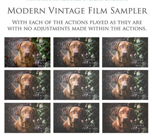 MODERN VINTAGE FILM Photoshop Actions