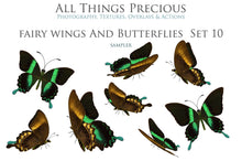 Load image into Gallery viewer, FAIRY WINGS and BUTTERFLIES Set 10