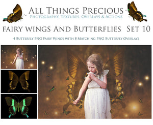 FAIRY WINGS and BUTTERFLIES Set 10