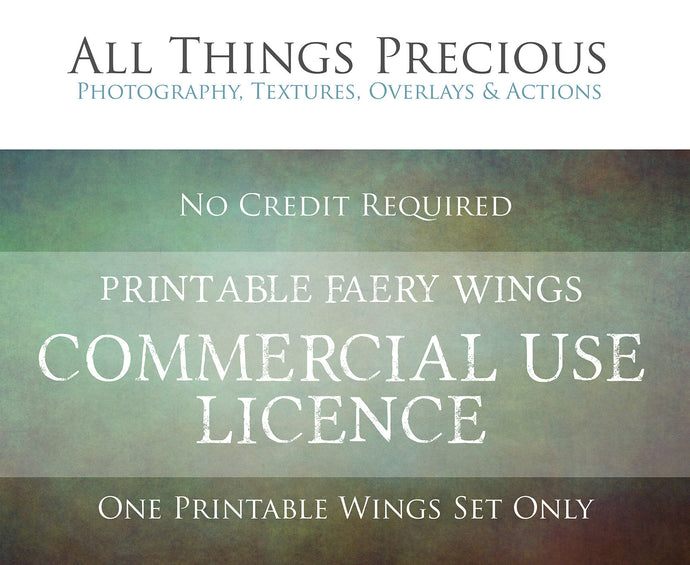 Print Fairy Wings COMMERCIAL LICENCE
