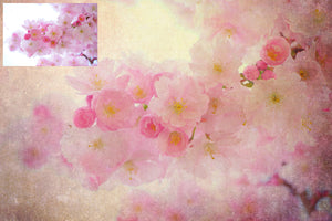 10 Fine Art TEXTURES - BERRIES & CREAM Set 5