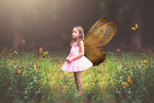 Load image into Gallery viewer, FAIRY WINGS and BUTTERFLIES Set 2
