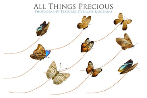 BUTTERFLIES ON A STRING Digital Overlays