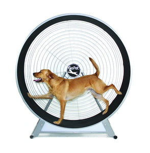 GoPet-Medium & Large Dog Exercise Wheel-CS6020