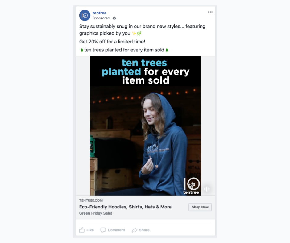 Example of a Facebook video ad.