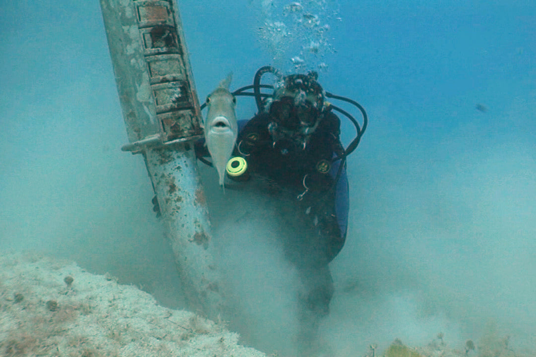 A diver searches for treasure in the waters surrounding Key West, Florida