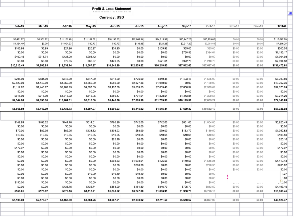 Profit and loss statement screenshot