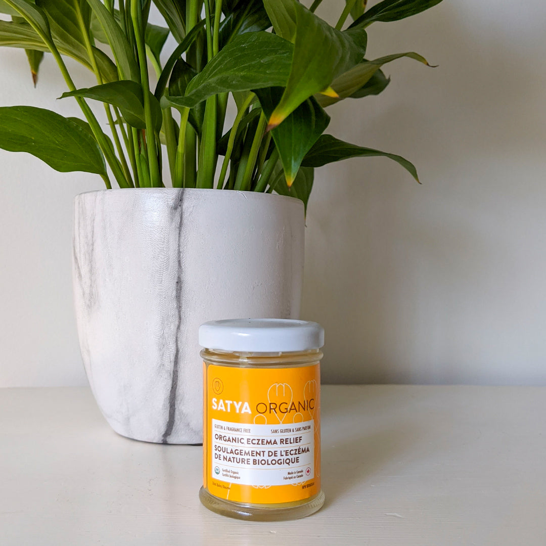 A jar of Satya's product backdropped by a plant.
