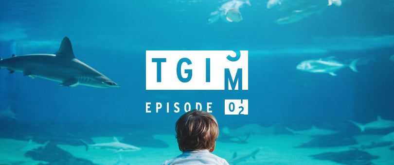 TGIM: The Recipe for Success, Pat Flynn, Pricing Products… and Yoga?