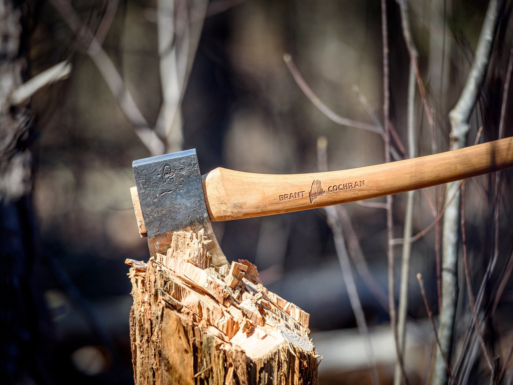 An axe stuck in a tree stump
