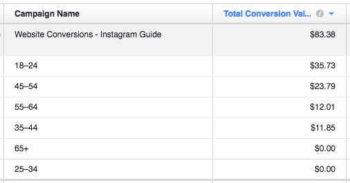 Screenshot of age breakdown in Facebook Ads Manager