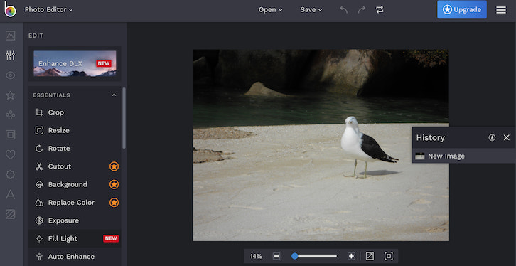 25 Best Online Photo Editor Softwares & Apps (Free and Paid)