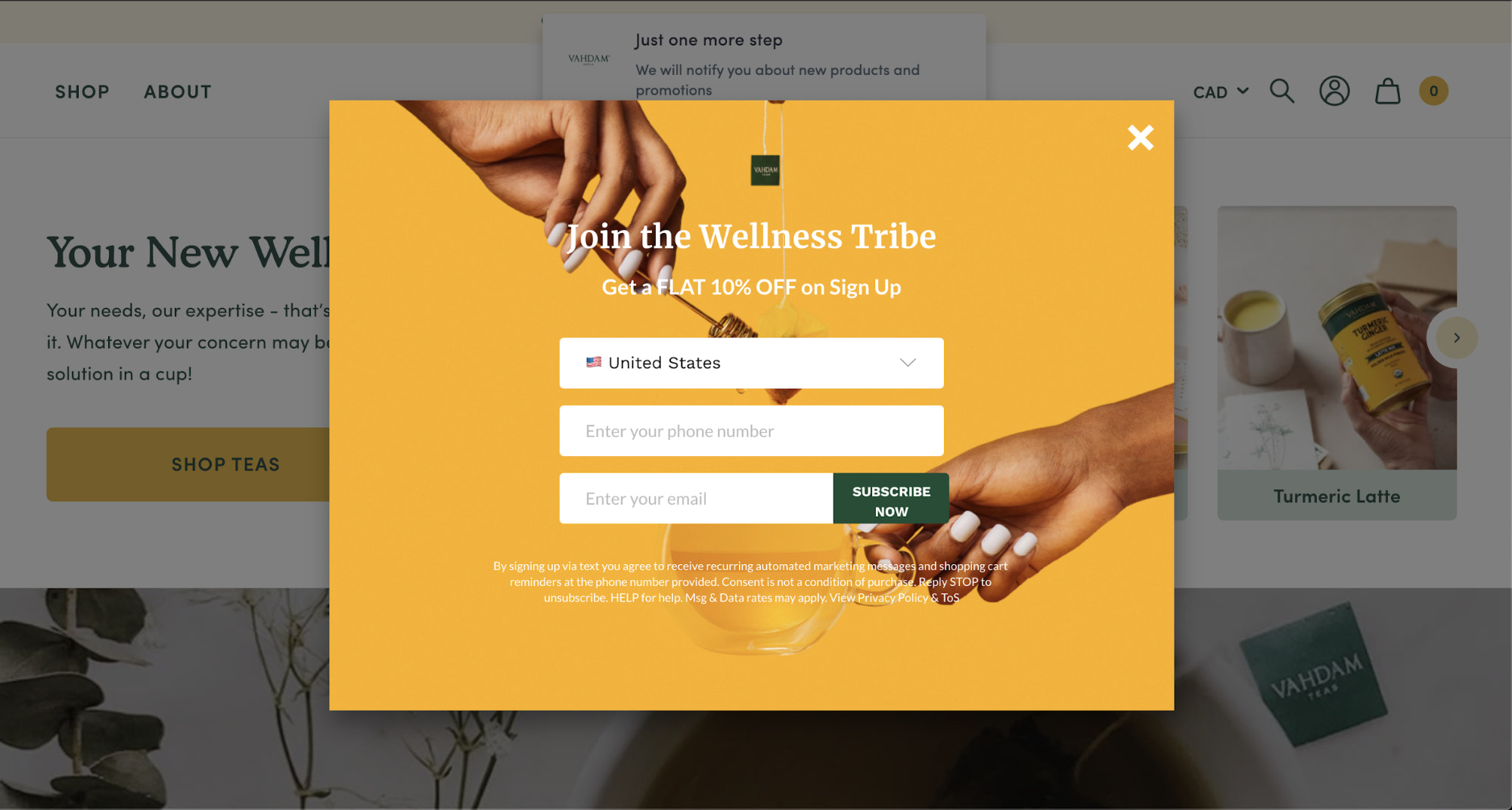 an email opt-in pop-up from vahdam teas