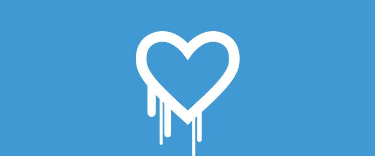 What is Heartbleed and How Does it Affect Your Ecommerce Website?