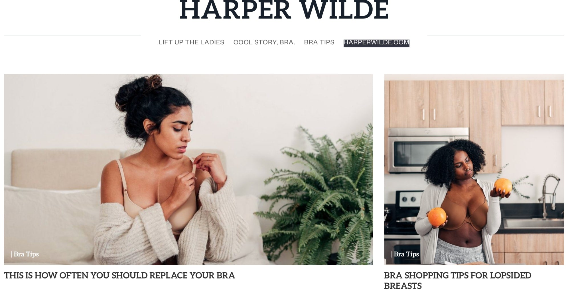 blog example for a bra company